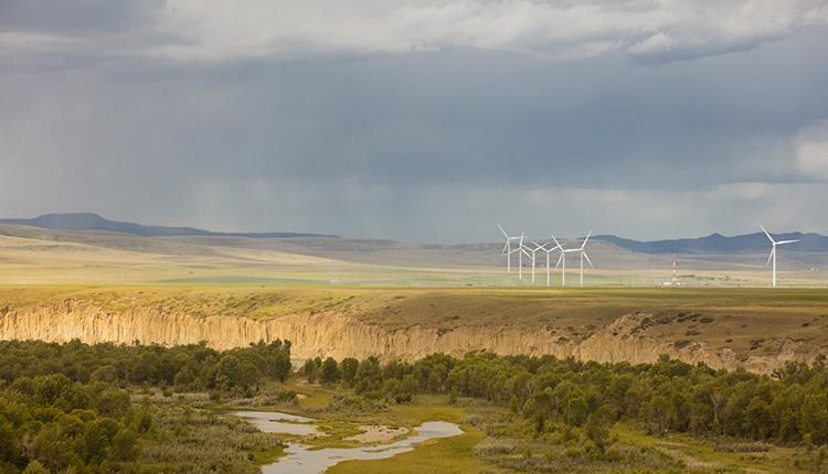 BMO Carbon Neutral Project Descriptions
