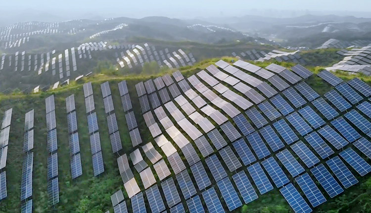 BMO declares climate ambition