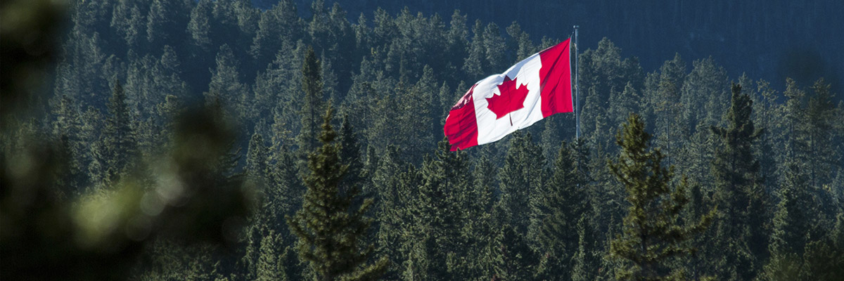 Canadian flag flying high above evergreen trees