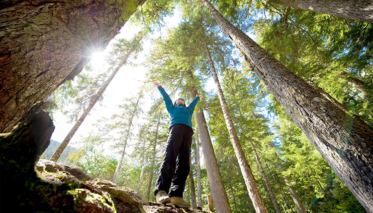 Earth Day 2021 – BMO turns trades into trees